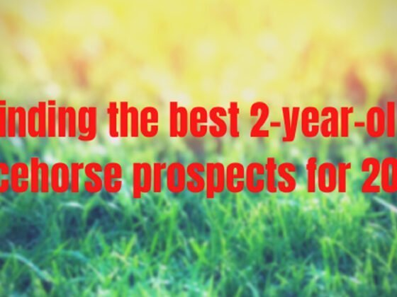 Finding the best 2-year-old racehorse prospects for 2020