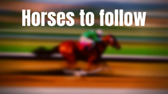 HORSES TO FOLLOW COCHISE