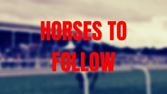 HORSES TO FOLLOW Sebastopol