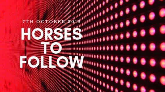 Horses to follow