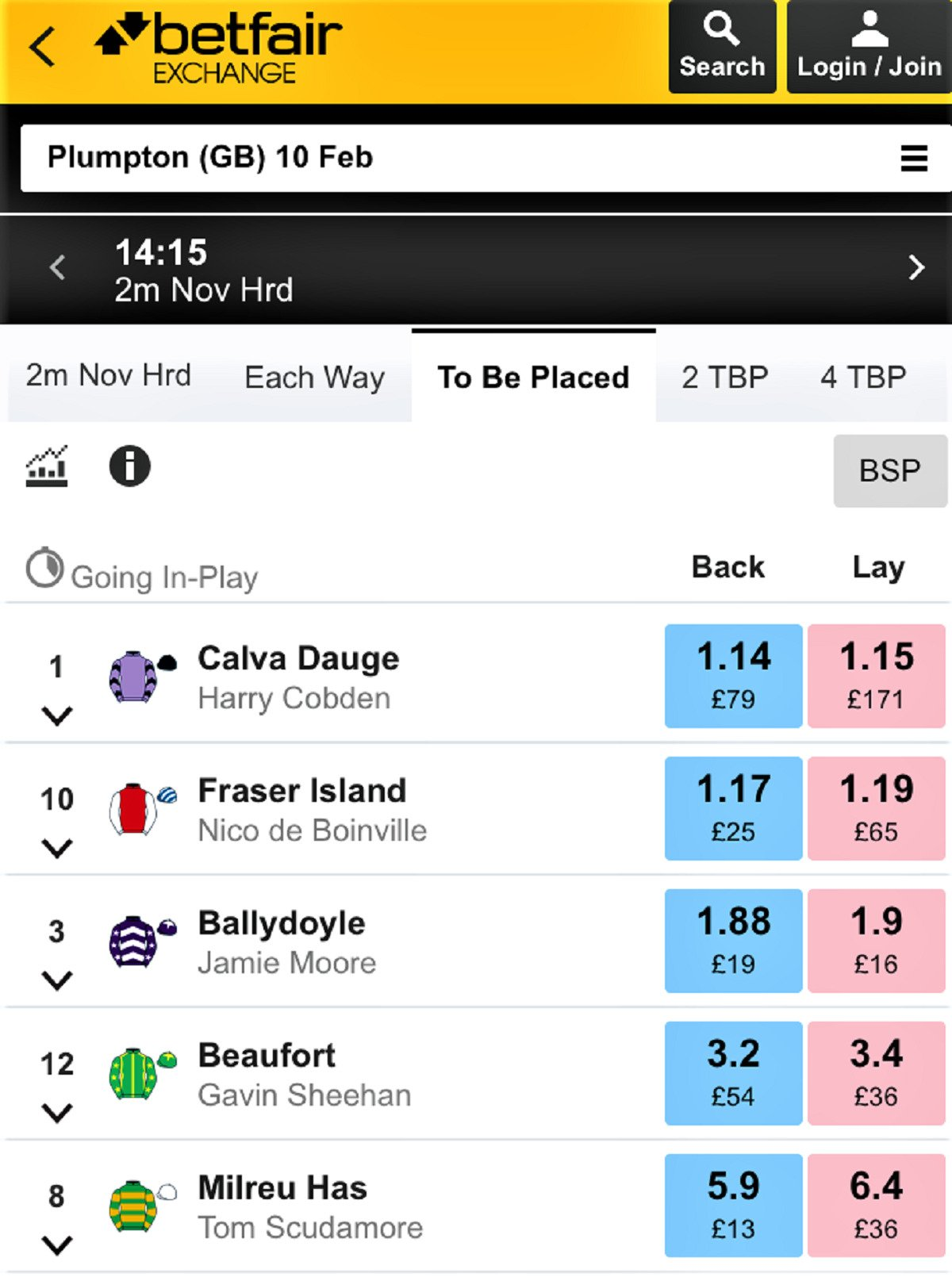 If you put a bet on each way what does it mean horse betting for dummies