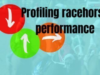 Profiling racehorse performance