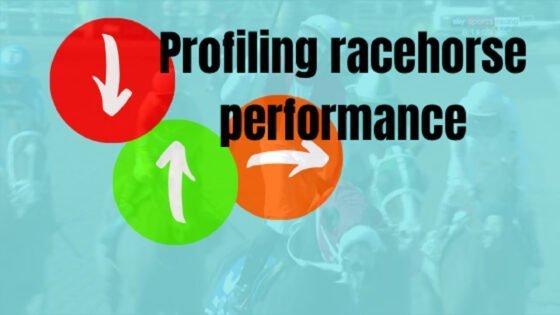 Profiling racehorse performance