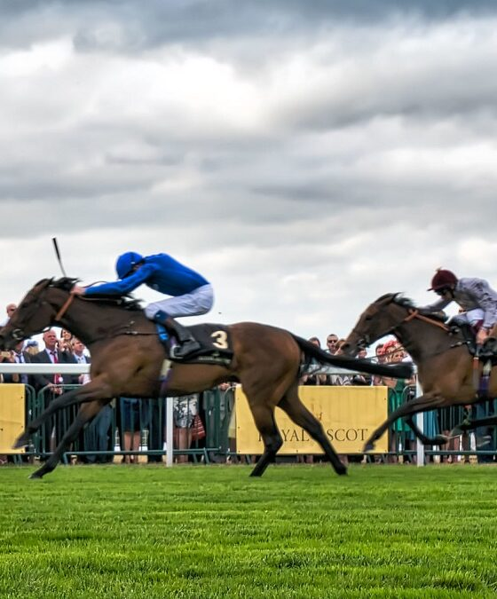 Horse racing dosage index