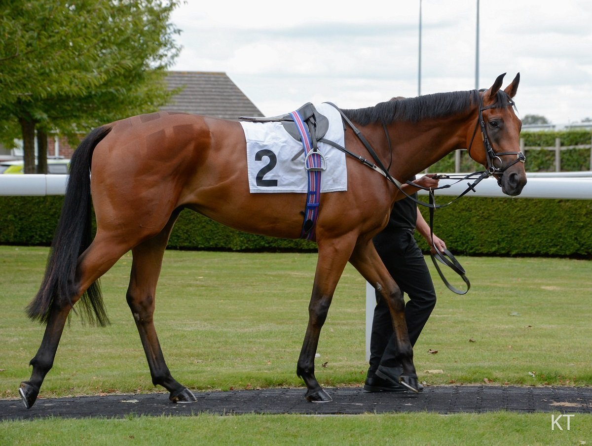 Race notes from week 1 of the flat racing season