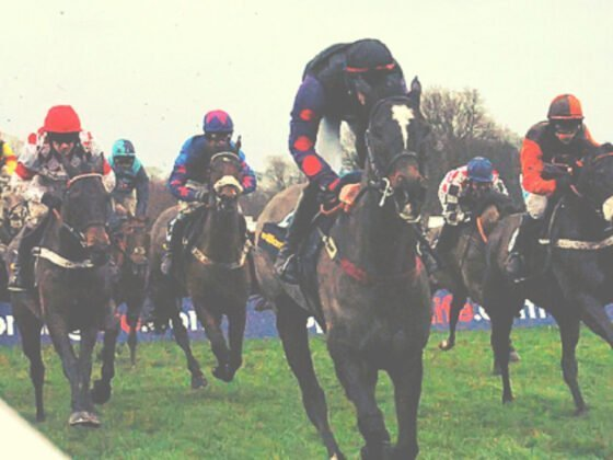 King George VI Chase Kempton on Boxing Day